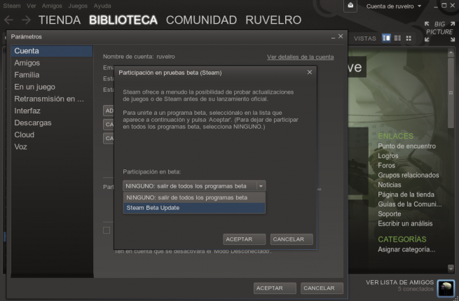 Steam_In-Home_Streaming_prueba_foto_3