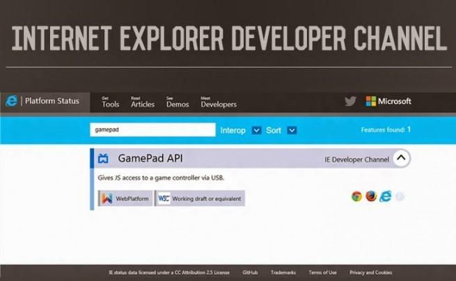internet-explorer-developer-channel-foto