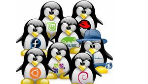 ¿Qué distro Linux es la mejor para servidores?