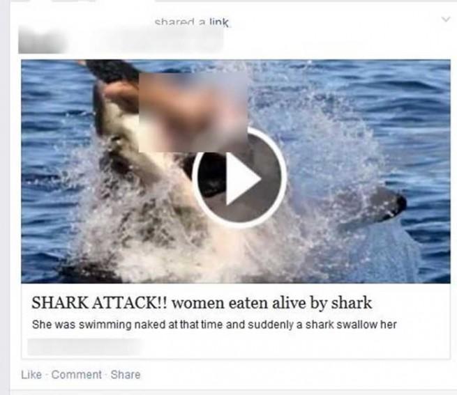 scam facebook ataque de un tiburón