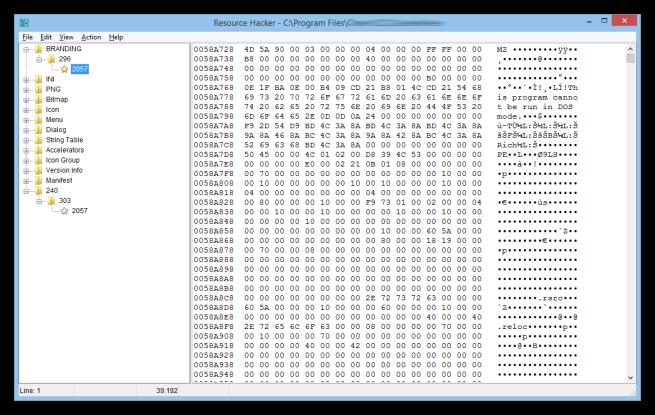 Resource_Hacker_analizar_binarios_foto_5