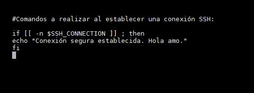 SSH_ejecutar_comandos_foto_2