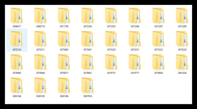 DVD boletines de seguridad de Microsoft