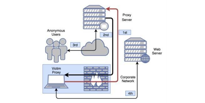 proxyback ingfecta equipos de usuarios