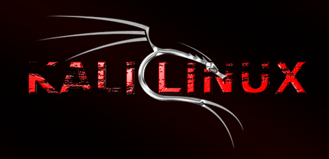 como usar kali linux para hackear wifi