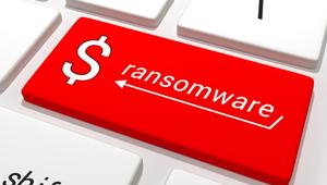 El 85% de las víctimas de ransomware no pagan