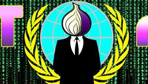 Detectan 110 servidores maliciosos en la red Tor