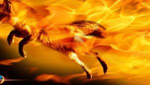 Firefox 52 bloqueará todos los plugins NPAPI… excepto Flash