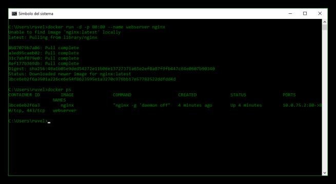 Nginx descargado y ejecutado en Docker