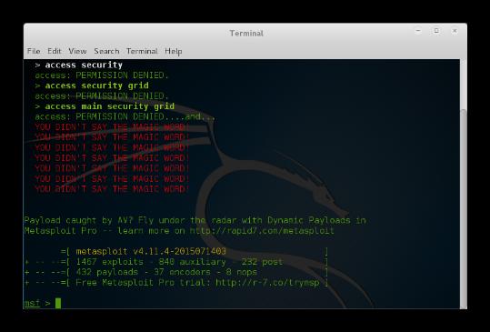 Metasploit Hackers