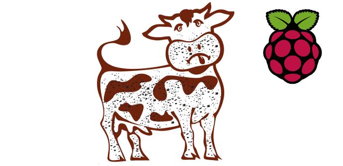 Dirty Cow Raspberry Pi