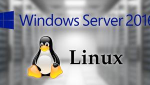 Microsoft lleva el Subsistema Linux a Windows Server