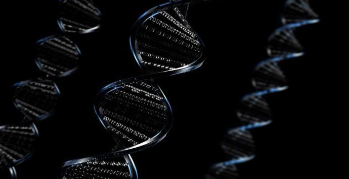 Malware en el ADN