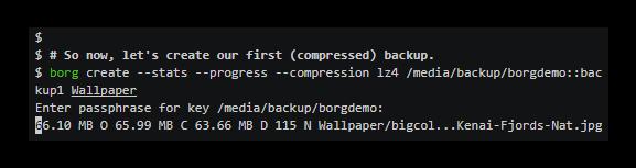 Borg 1.1