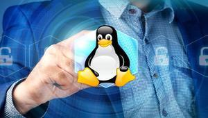 Conoce estas distribuciones de Linux enfocadas en la seguridad