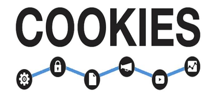 Cómo eliminar las cookies de navegación