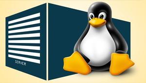 5 interesantes distribuciones para servidores Linux para empezar el año