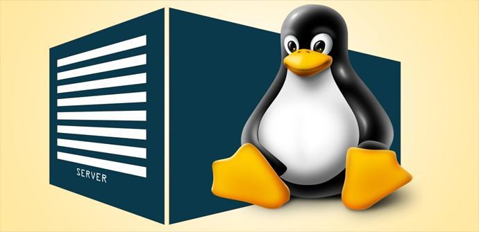 Ver noticia '5 interesantes distribuciones para servidores Linux para empezar el año'
