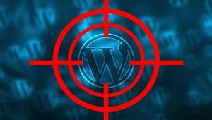 Encuentran una puerta trasera en un plugin de WordPress con 300.000 descargas