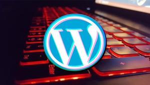 Un keylogger ataca a más de 2.000 páginas de WordPress