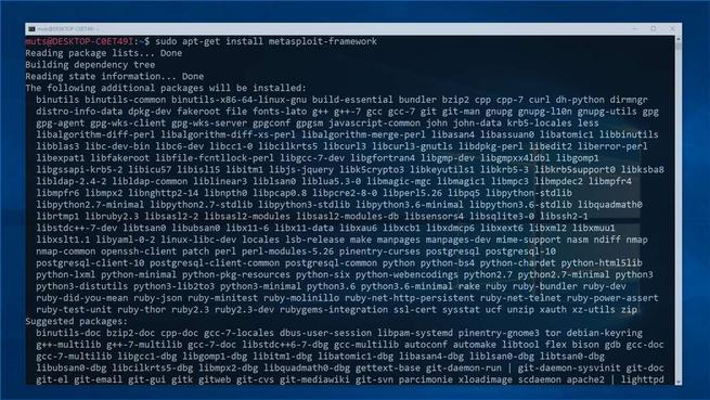 Kali Linux en Windows 10