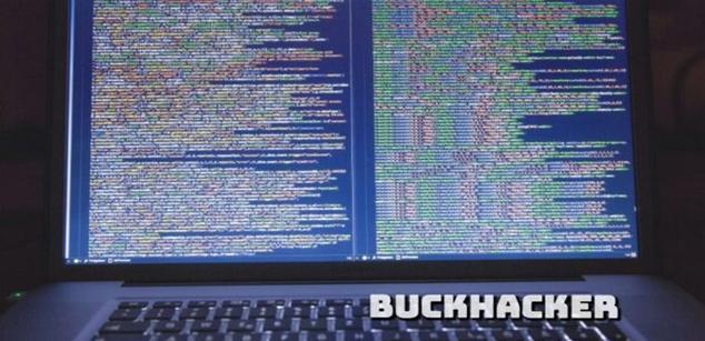 BuckHacker, un proyecto de motor de búsqueda de servidores expuestos