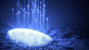 50 dólares: esto es lo que vale tu identidad en la Deep Web; aprende a proteger tus datos