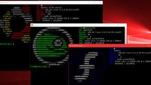 WSL DistroLauncher, así es como Microsoft quiere que crees tu propio Linux para el Subsistema Linux de Windows 10