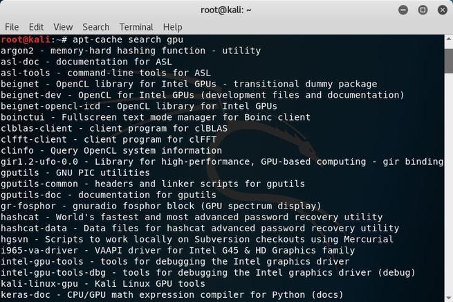 Kali Linux - Buscar paquetes