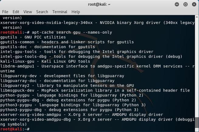 Kali Linux - Filtrar paquetes por nombre