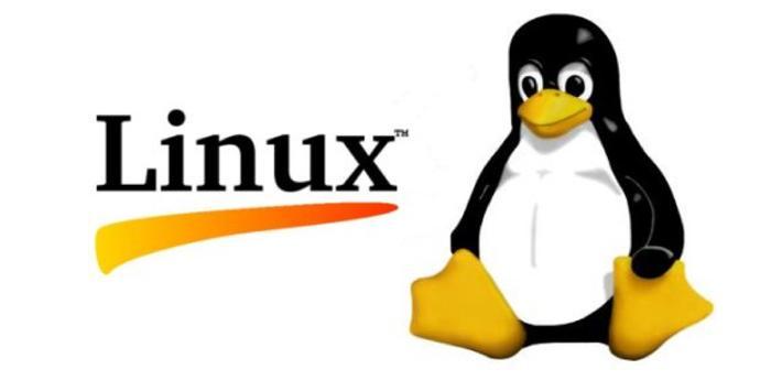 Distribuciones de Linux para desarrolladores