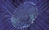 """Project Fusion: así será el nuevo """"modo super privado"""" que unirá Tor con Firefox"""