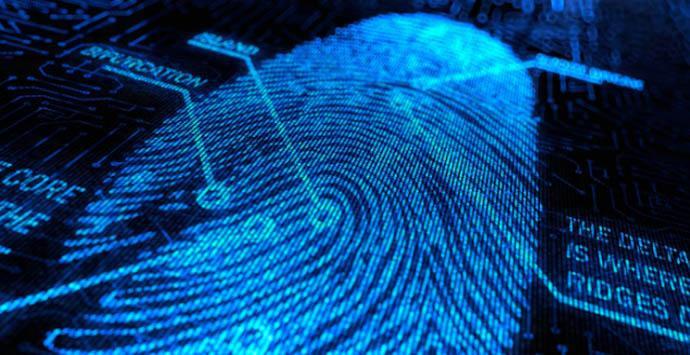 Privacy Possum, la extensión para evitar el rastreo