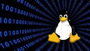 Conoce Tsurugi Linux, una distro para hacking ético y análisis de malware