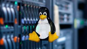 ¿Cuál es la mejor distribución Linux para usar en servidores? (Edición 2019)