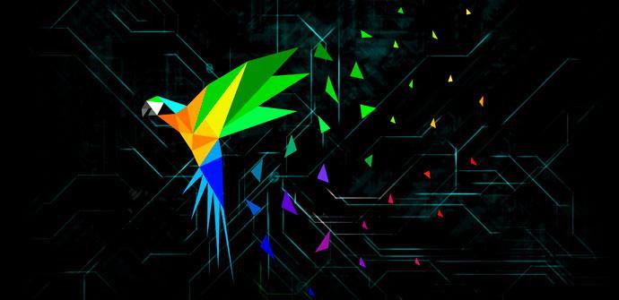 Parrot OS Hacking ético