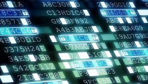 Pack de contraseñas: así es el último servicio que ofrecen los piratas informáticos en foros de la Deep Web