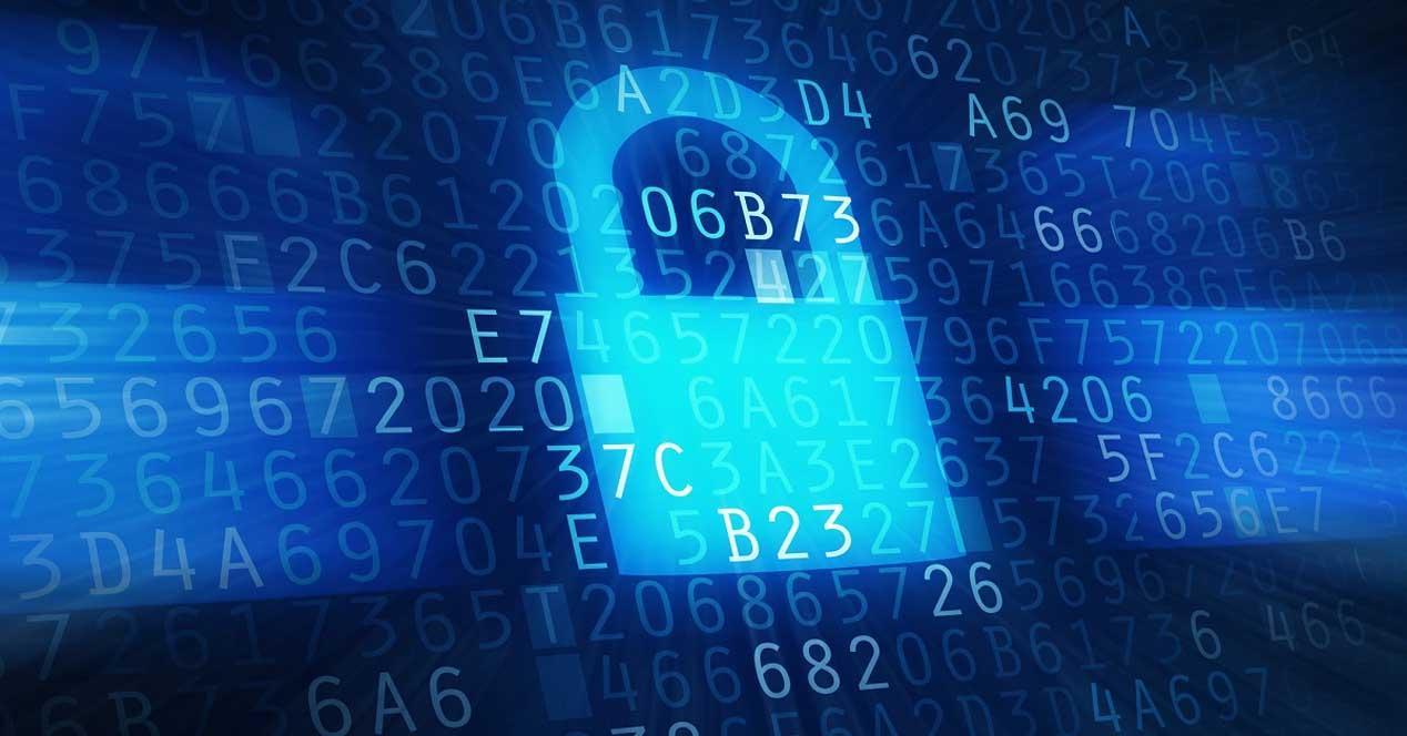 Evitar el robo de datos en la red