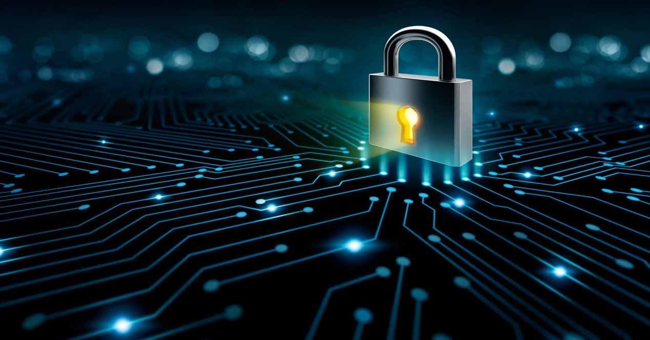 Eliminar los datos en Internet