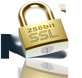 ssl_256bit_logo